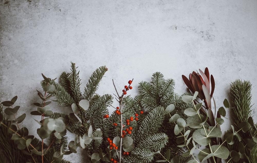 Happy Holidays from CUTA